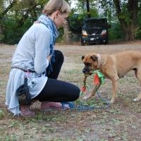 Stowarzyszenie Zwierzeta Ludziom - szkolenie psów_5