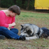 Stowarzyszenie Zwierzeta Ludziom - szkolenie psów_7